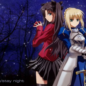 [anime][NN][Fate/Stay Night] Rin Tohsaka and Saber